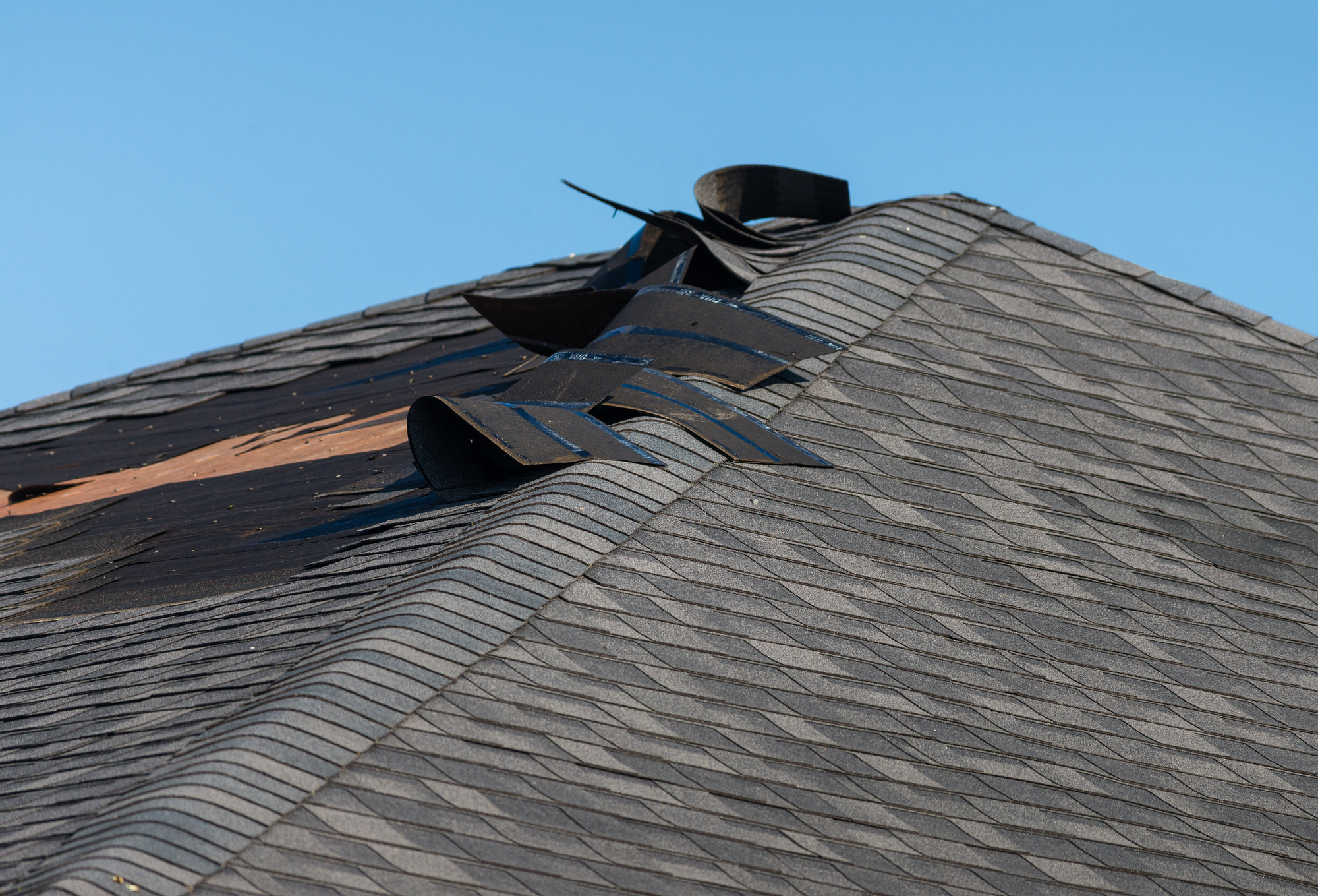 Common Signs of Roof Damage Homeowners Should Know